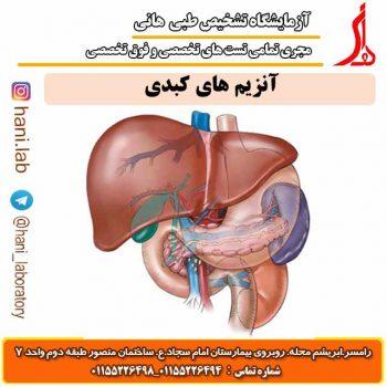 آنزیم های کبدی